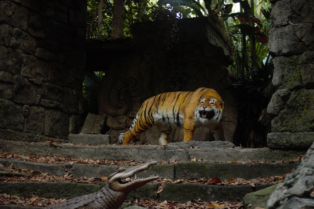 Jungle Cruise Tiger